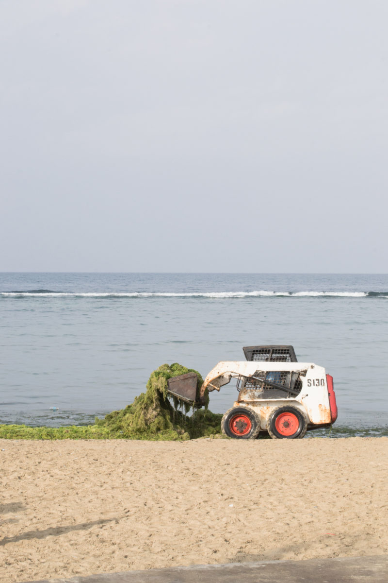 Seaweed collector at Jeddah Corniche by Noel Cabacungan