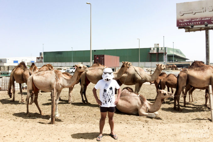 Trooper Travels with Camels