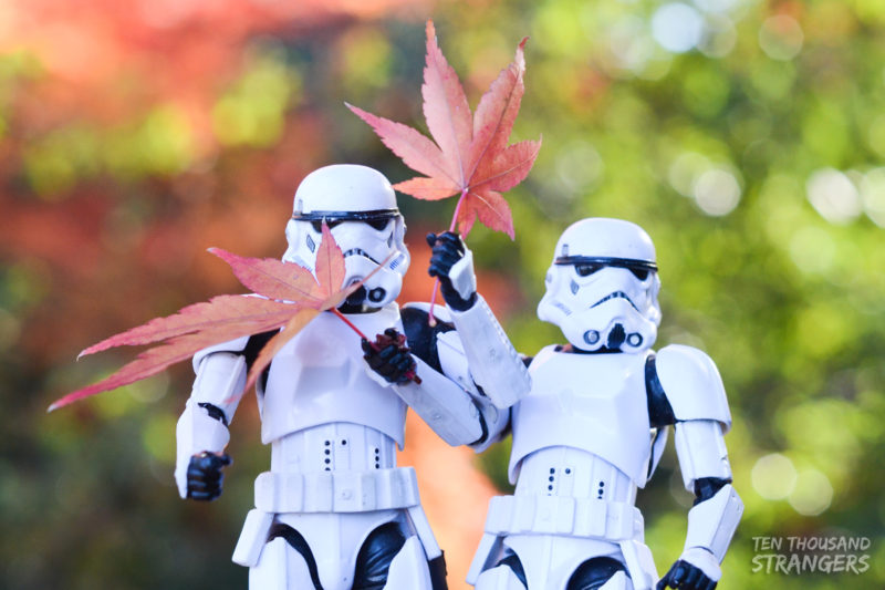 Stormtroopers and fall colors