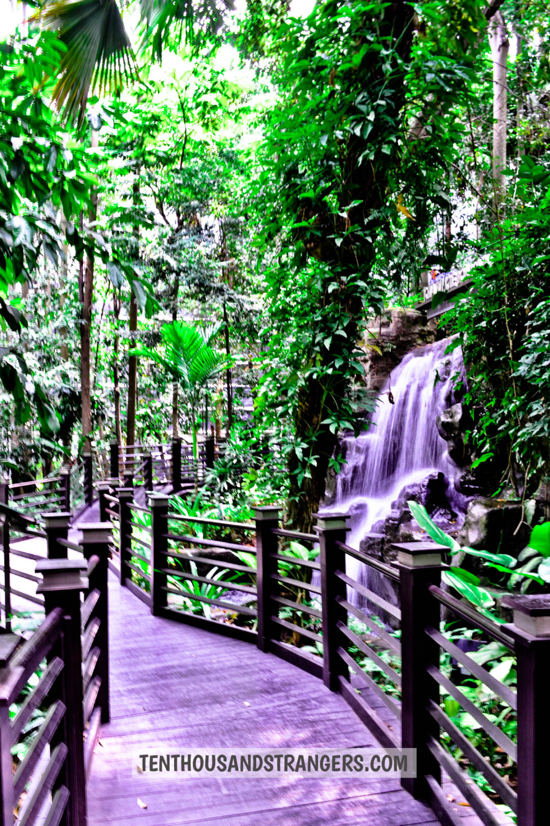 KLIA Jungle Boardwalk waterfalls