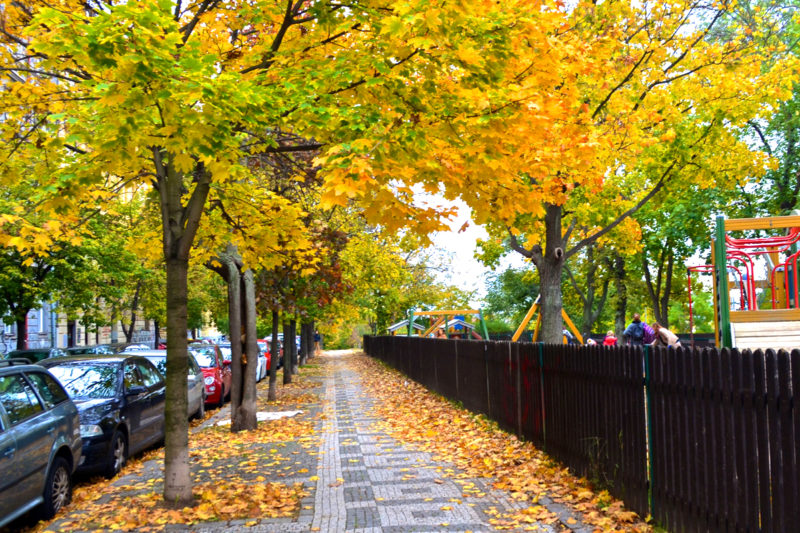 Vinohrady, Prague, Czech Republic, Autumn 2017. Photo by Punita Malhotra, 100cobbledroads