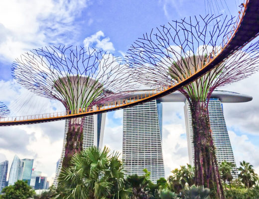 Supertree Grove, Singapore Layover Guide