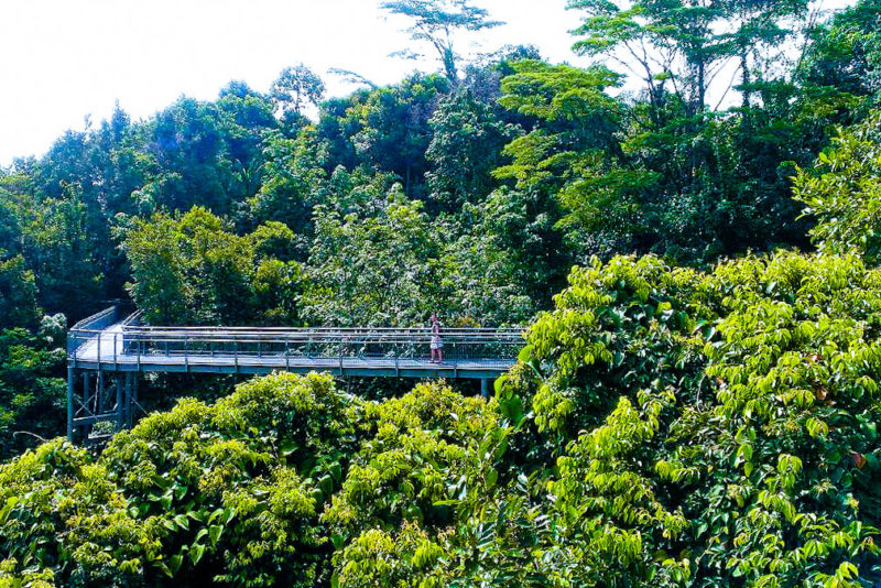 Southern Ridges - Free Singapore Attractions