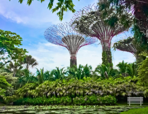 Free Singapore Attractions