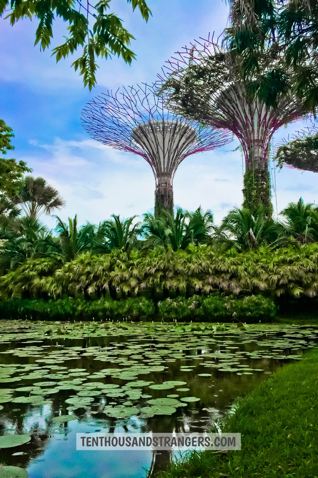 Free Singapore Attractions for the Budget Traveler