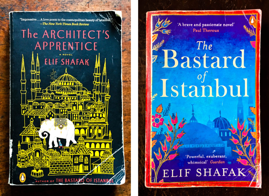 The Architect's Apprentice & The Bastard of Istanbul by Elif Shafak
